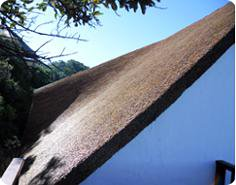 Thatch roofs, large thatching projects & thatched roof maintenance