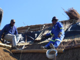 The Cintsa Thatching team fitting a fire retardant blanket to a thatched roof