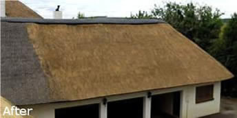 cintsa thatching thatched roof maintenance - Thatched Rood