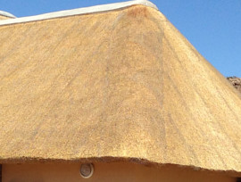 Goegap thatching project - hex-net fitted over thatch roof
