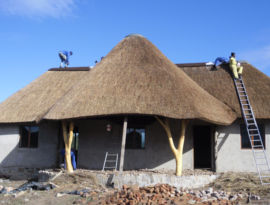 Thatched house roof - private residence at Side by Side Safari lodge
