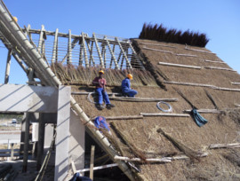Mthatha Dam Thatching Project, Eastern Cape
