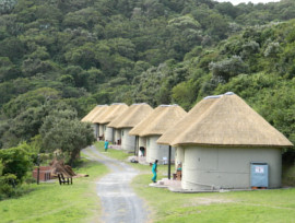 One Of The Most Experienced Thatching Companies Is South